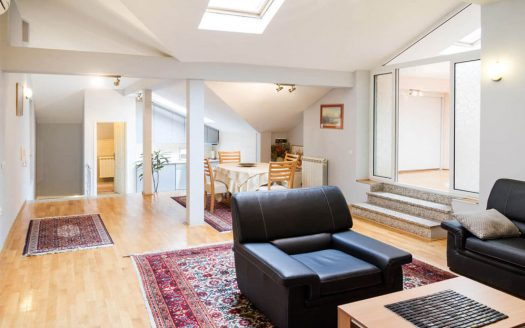 Apartment Slavija Square