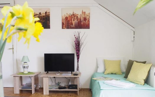 stan na dan danica - tv i sofa